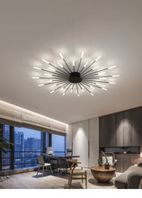 European style modern simple creative fireworks LED ceiling lamp living room bedroom home lighting