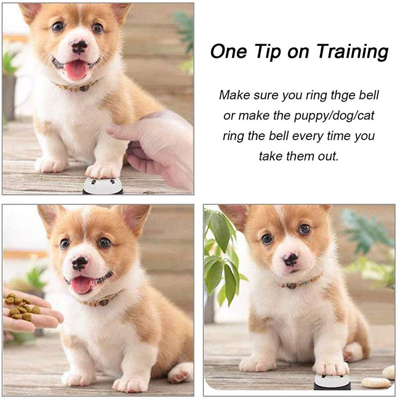Pet Training Bells Dog Cat Training Eating Communication Press Call Bell Puppy Toilet Potty Training Interactive Toy-2