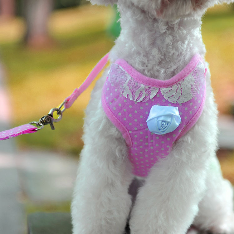 Nice Pink Collar Dog Chest And Back With Pet Traction Rope Chest And Back Set Dog Rope