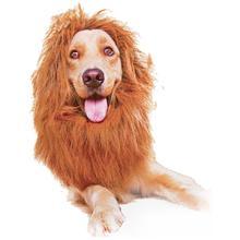 Домашнее животное парик Забавный Лев головной убор шляпа с хвостом собака Фестиваль одеваются Декор поставки