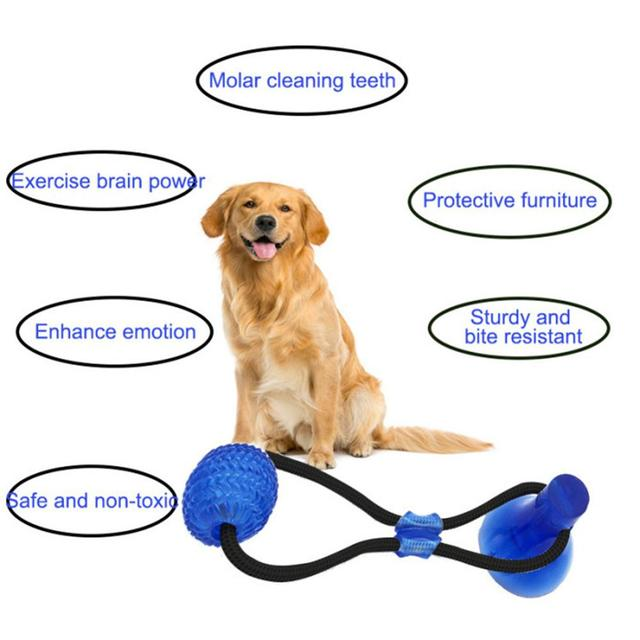 Dental Cleaning Toys For Small and Medium Dogs Pets Dogs Toy