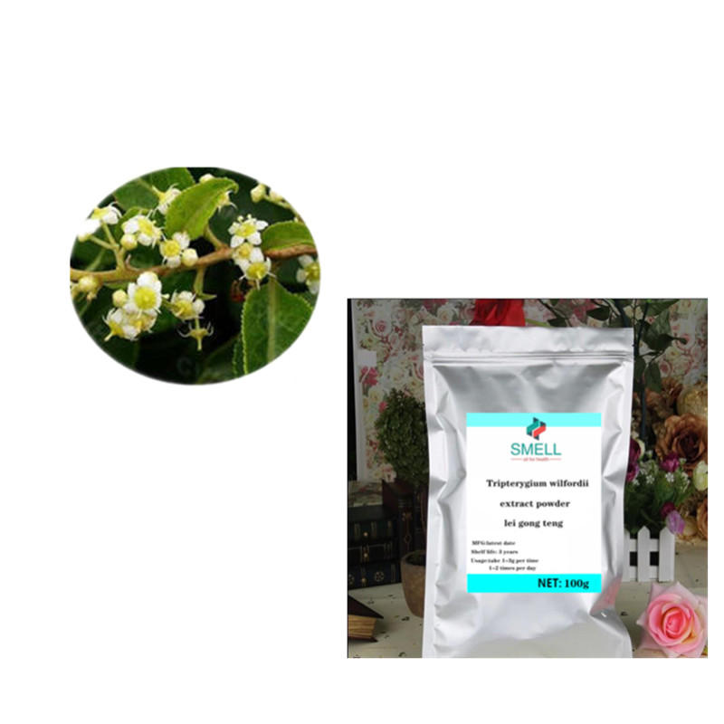 GMP Hot Sales Product High Quality Tripterygium Wilfordii Extract Powder /lei Gong Teng/ 98% Triptolide CAS:38748-32-2