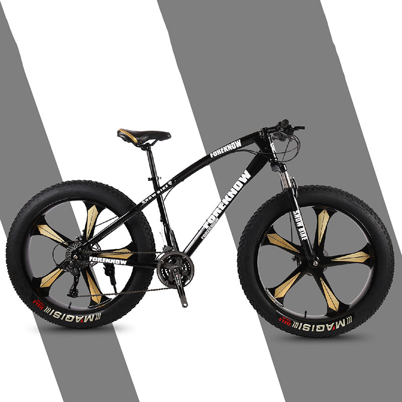 Mountain Bike Mountain Cross Country Beach Snowmobile Adult Wide Tire Leisure Scooter Speed Male And Female Students Bicycle