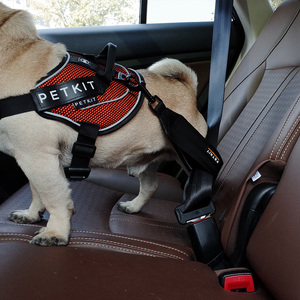 Image 4 - Petkit cinturón de seguridad de coche para mascotas, resistente al desgaste, correa de pecho de seguridad para perros pequeños y medianos, Clip de viaje, arnés para mascotas, cinturón de seguridad