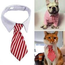 Милый щенок собака в полоску с галстуком бабочкой ошейник для