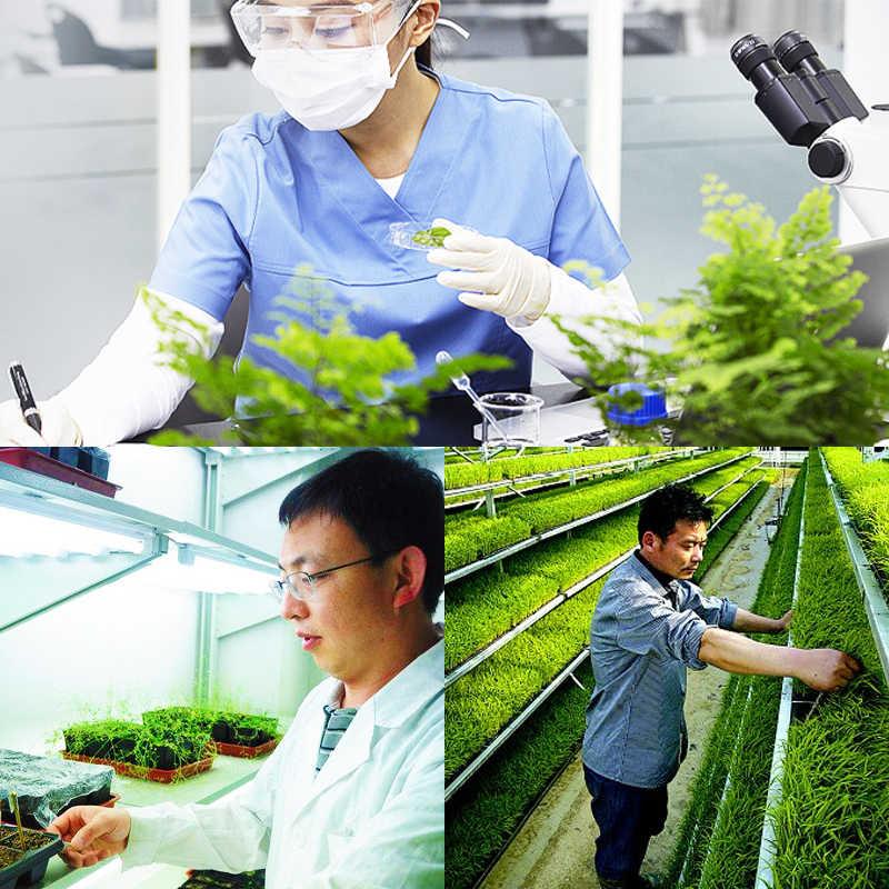 พิเศษผักปุ๋ยเสริมพืชโภชนาการHomobrassinolideขยายผลไม้Rapid Rootingบ้านสวนBonsai