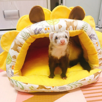 Totoro squirrel rabbit guinea pig small honey marmot and other small pets ferret guinea pig cage pet mat hamster bed sofa