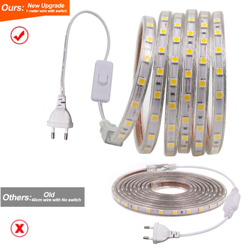 5050 LED Strip Light 220V IP67 Waterproof Flexible Ribbon Tape 60Leds/m Smart Rope Light Home Outside Decor With Switch EU Plug image