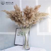 20pcs pampas grass decor real dried reed flower bunch wedding flower bunch natural plants decor