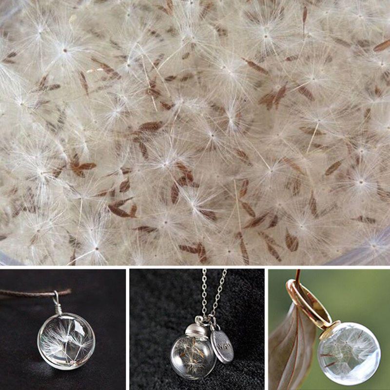 100 шт. натуральное семя одуванчика маленький стеклянный шар верхний слой смолы желаю сушеные прессованные цветок серьги ожерелье ювелирных...