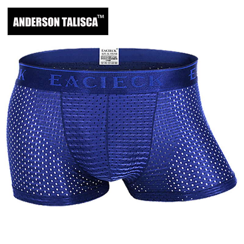 ANDERSON TALISCA Brand Silk Hollow New Mens Boxers Underwear Men Boxer Ropa Interio Man Penis Cueca Masculina Size M 3XL E248