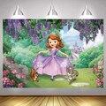 По индивидуальному заказу, принцессой Софией Ночная фон для фотосъемки для девочек с героями мультфильма «Моана»; Замка для детей с днем ро...