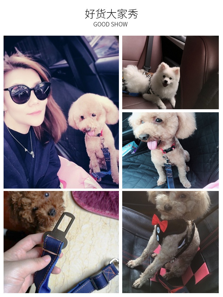 Dog Car With Small, Medium And Large Pet Car Teddy Car Mounted Buckle Rope Universal Useful Product