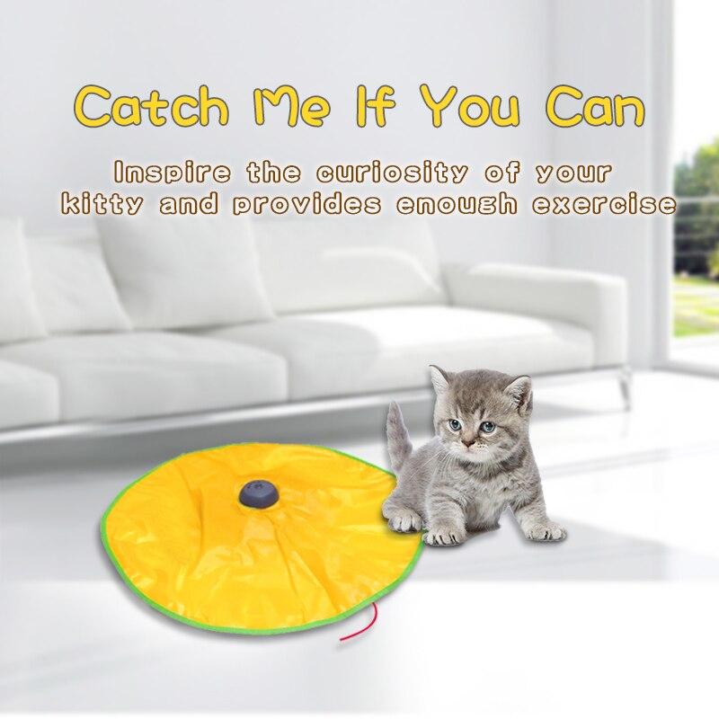 Cheap Brinquedos gatos