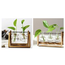 1 Pcs Creative Bulb Vase Plant Glass Hydroponic Container Wooden Home Decorations & 3 Pcs Plant Terrarium with Wooden Stand Glas(China)