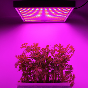 Image 5 - 2000LED Grow Light With Dimmer AC85~265V Indoor Greenhouse Tent Hydroponic Aquarium 200W Full Spectrum Adjustable Led Grow Lamp
