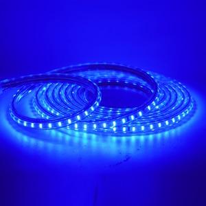 Image 5 - 220V LED Light Strip 3014 SMD Waterproof 120LEDs/m Outdoor Rope LED Strip Light White/Warm White/Blue EU Power Switch plug