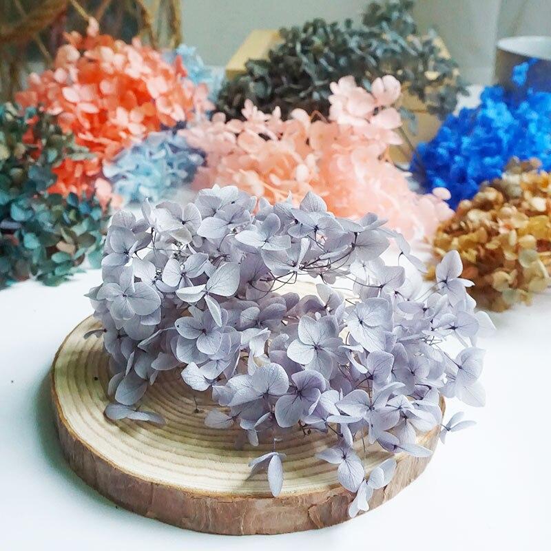 Сушеные цветы, сохраненные маленькие листья, сохраненные гортензии, декор для офиса, настоящие цветы