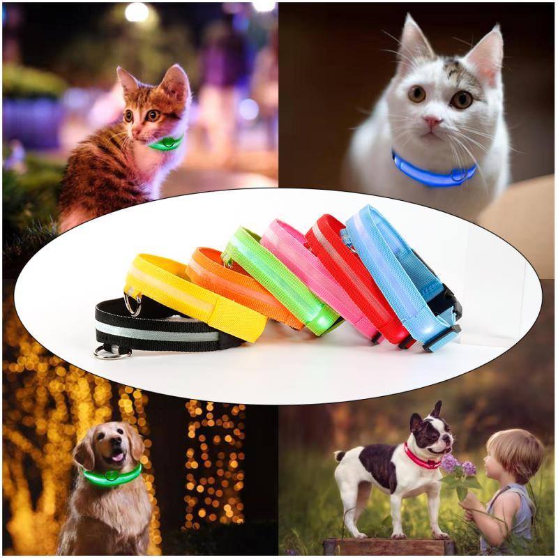 7 цветов нейлоновый собачий поводок ошейник собачий Кот ошейник светящийся кулон безопасность домашних животных ночью поводок ожерелье сбруя для собак товары для питомцев|Воротники|   | АлиЭкспресс