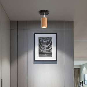 Image 5 - LED 통 표면 6W 천장 조명 Led 천장 Downlight 북유럽 철 + 나무 스포트 라이트 실내 로비, 거실