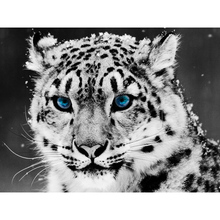 DIY 5D Full Diamond Painting Cross Stitch White tiger Mosaic Diamond Embroidery Needlework Patterns Rhinestone kits needlework 5d mosaic diamond embroidery lemon tea diy diamond cross painting stitch patterns full diamond wdy