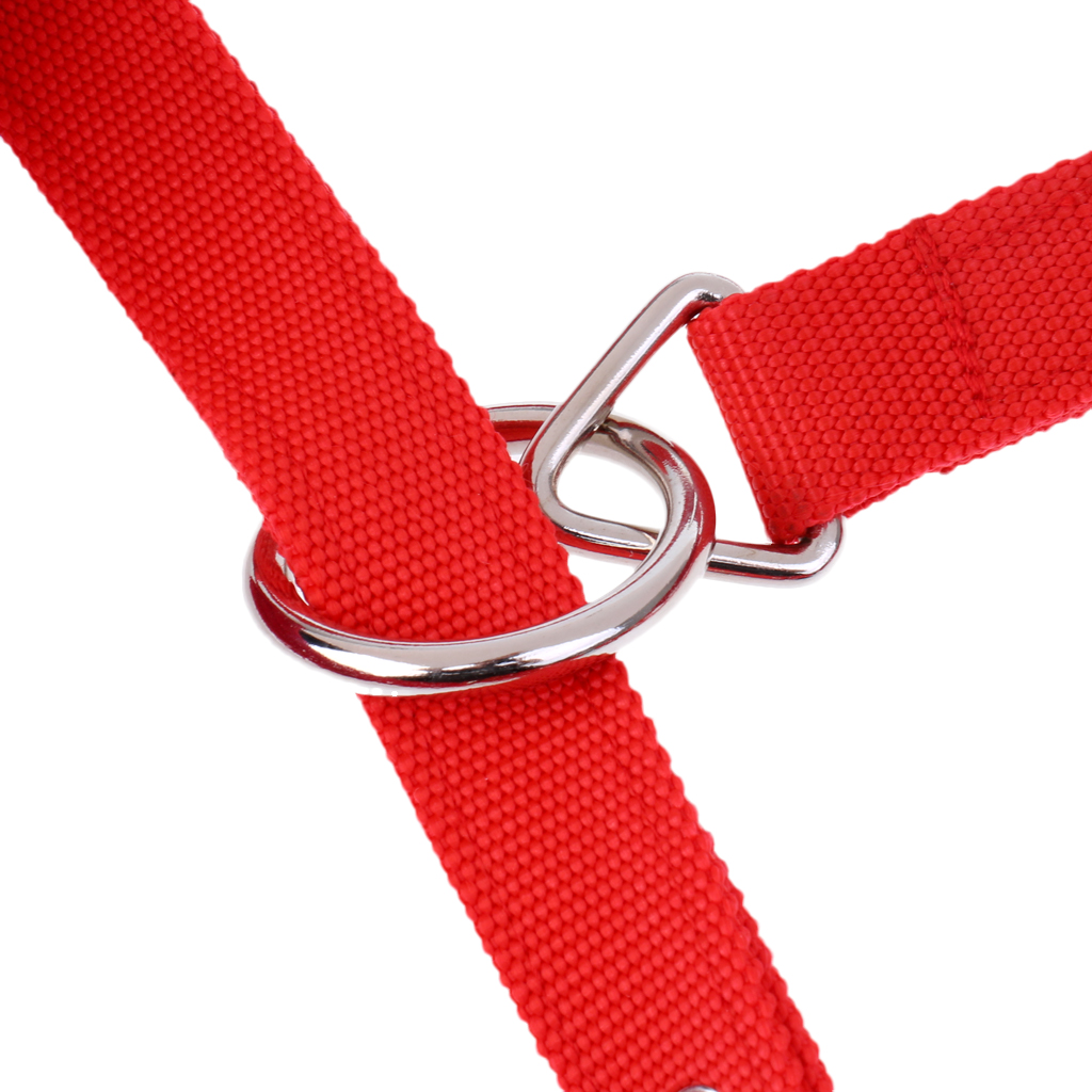 Red Fleece Padded Horse Halter Head Collar Adjustable + 2.5 Meters Lead Rope