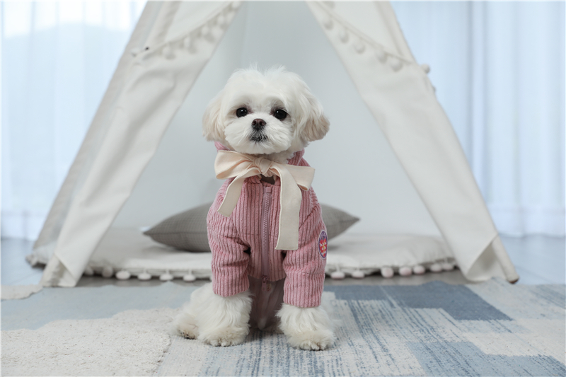 dogs winter apparel thick outfit (6)