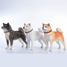 1/6 Scale Japanese Akita Working Dog Model Jxk007A/B/C Anime Statue for 12 inches Action Figure Scene Collections Decoration
