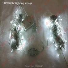 110v 220v led lighting strings 10meter 100leds white warm white red yellow blue green RGB waterproof  Christmas tree lights