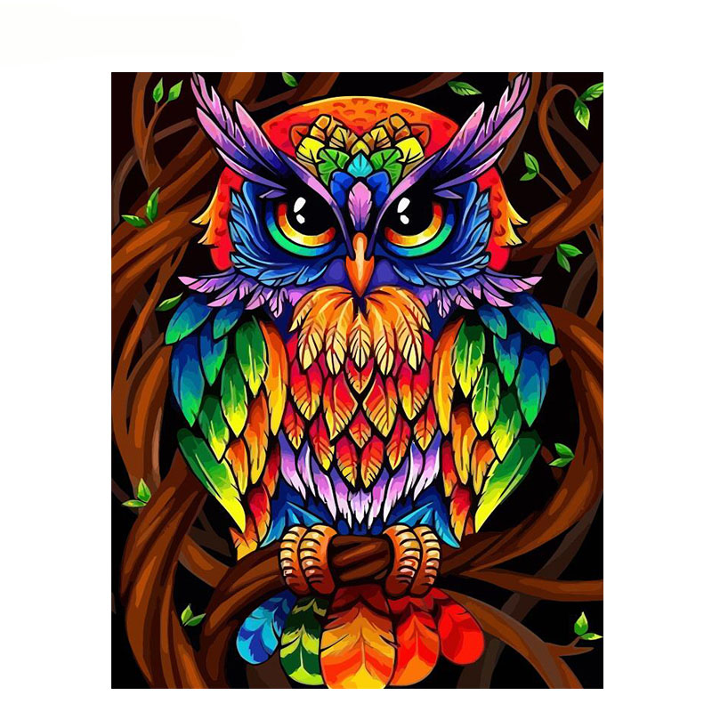 Color Owl.40x50cm,Painting By Numbers,DIY,wall Art,Living Room Decoration,Scenery,Figure,Animal,Flower,Cartoon