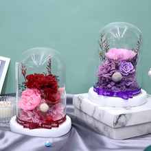 Beauty and The Beast Rose High Quality Eternal Flower Carnation Glass Cover Dried Flower Home Decoration Mothers Day Gift Basket недорого