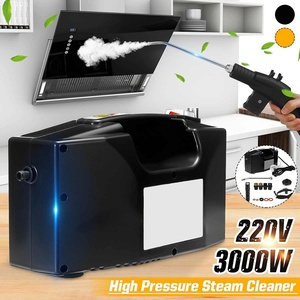 220V 3000W High Pressure Steam