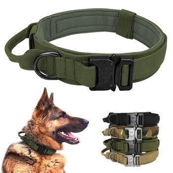 Heavy Duty Dog Collar