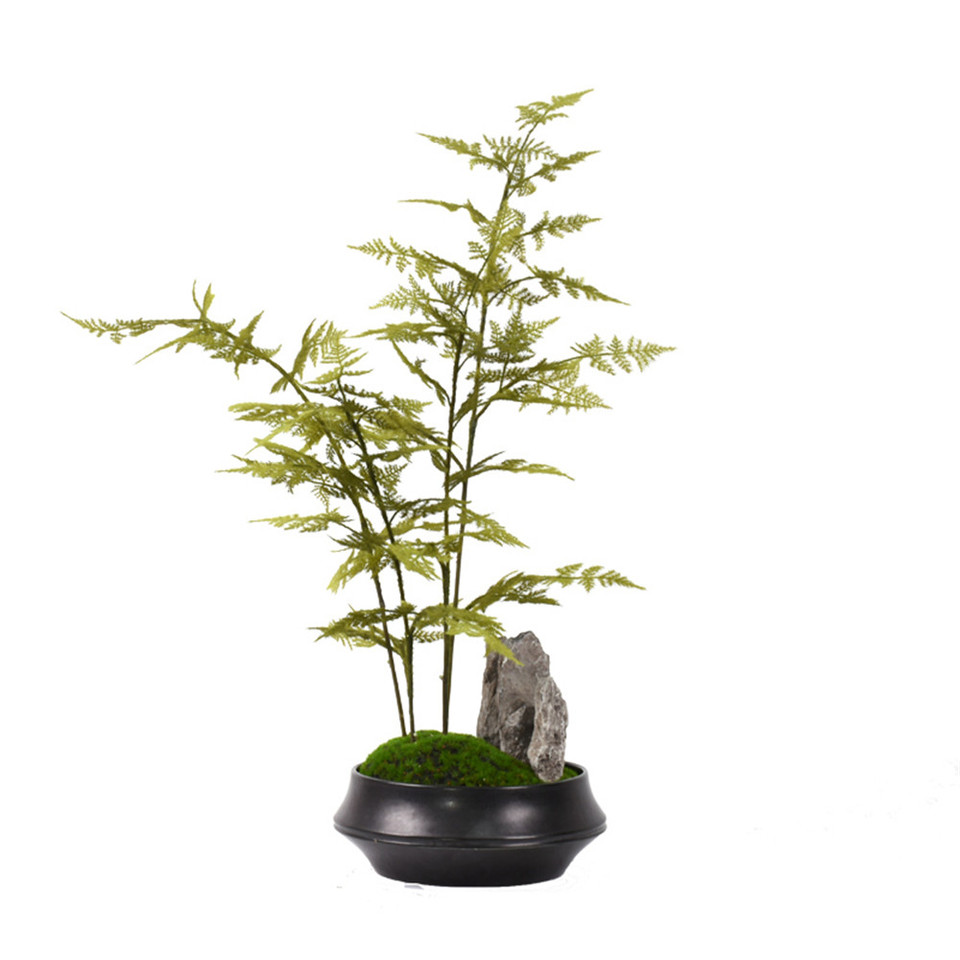 1 Pc Artificial Plants Asparagus Fern Bonsai Small Bamboo Bonsai Setose Asparagus Plants Fake Bonsai Artificial Dried Flowers Aliexpress