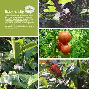 Image 5 - 50 adet/takım kullanımlık bitki desteği bahçe klipleri asma sebze domates kafes klipleri bahçe sebzeleri dik araçları