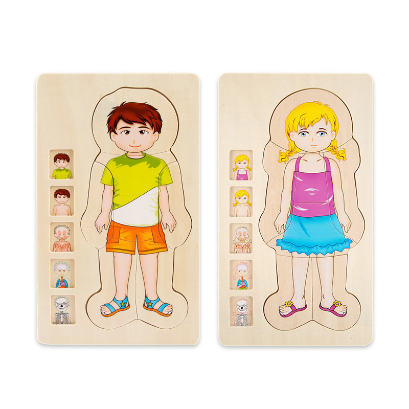 Multi-Layer Wooden Human Body Puzzles Structure Toys Children Early Learning Educational Body Cognition Baby Toys Puzzles
