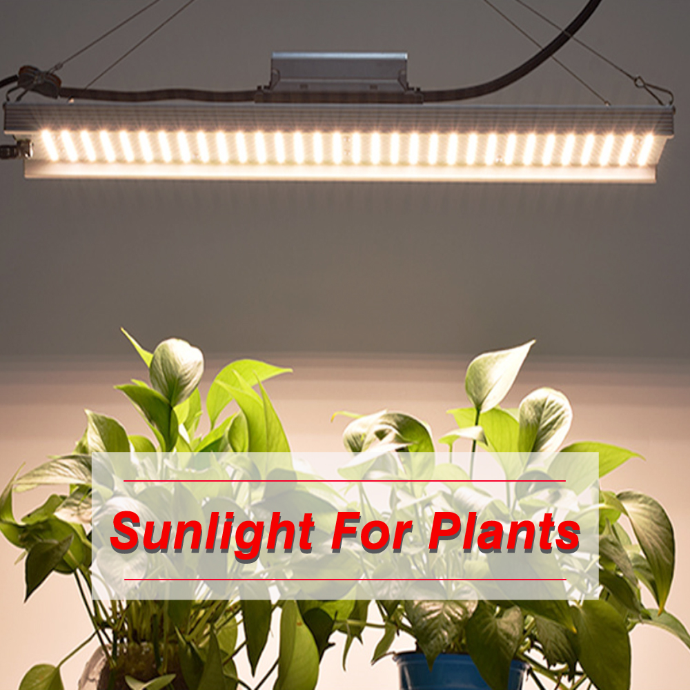 Quantum Led Grow Light Bar Samsung LM301B Chips Full Spectrum 3000K Mix 660nm Meanwell Driver Growth Lamp Indoor Planting