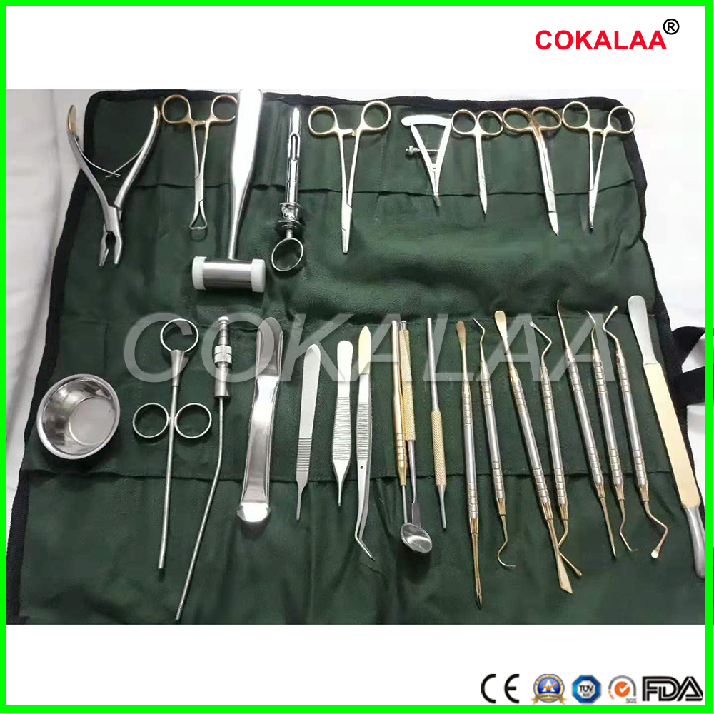 Medical Implant 26 Sets Of Dental Instruments And Instruments For Oral Surgery Kits Equipment Set Planting Tools