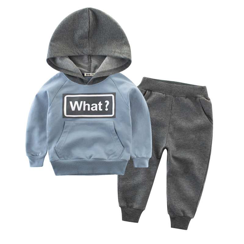 Clothing Sets Children Boys Girls Fashion Clothes Kids Toddler Tracksuit Autumn Baby Hoodies  And Pants  Suits Sport 2