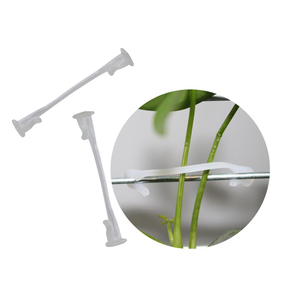 Plants Bundled Lashing Hook Garden Accessories Fixed Vegetable Strapping Of Fruit Vines For Garden Tree Climbing Support 100 Pcs
