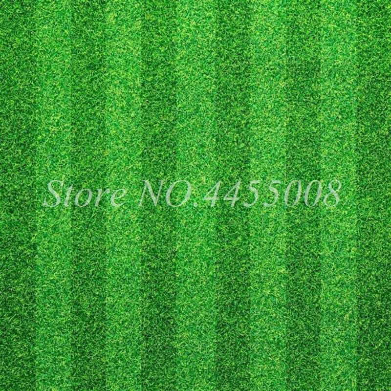 ขายร้อน!!! 1000 Pcs หายากสนามหญ้าสนามหญ้านำเข้ายืนสนามหญ้า Bonsai Potted ดอกไม้สวนกลางแจ้งประดับพืช Easy TO Grow