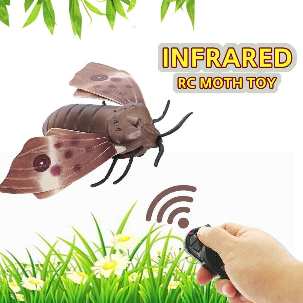 Cheap Animais e robôs por radiocontrole