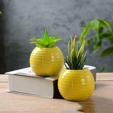 Succulent Plant Pot Meaty Vegetable Container Living Room Landscape Decorative Flower Planter