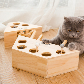 CAT WHACKING TOY BOX