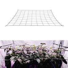 Netting-Plant-Support Hooks Tents-Box-Kit Mesh-Trellis Training Elastic Low-Stress Grow