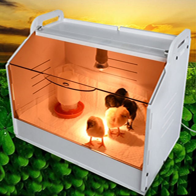 HHD Brooding Incubator For Chicken, Ducks, Quail, Geese, Turkey, Birds, Tortoise, Hedgehogs  1
