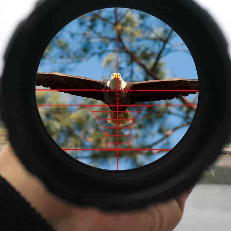 Bsa Optics 6-24x50AOE Tactical Riflescope Rood Groen Verlichte Rifle Scope Sniper Optic Sight Hunting Scopes