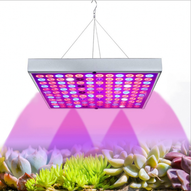 Led Grow Light   Full Spectrum Plant Lighting  For Plants Flowers Seedling  LED Plants Grow Lights Cob For Indoor Box Plant Lamp