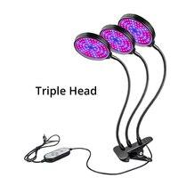 Three Head