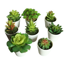 Simulation Succulent Faux Plants Bonsai Fleshy Latex Fake Plant with Plastic Flower Pot for Home Decor Wedding Garden Decoration